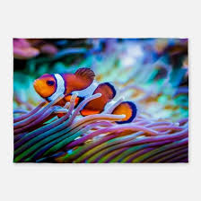 Fish Area Rug Fish Rugs Fish Area Rugs Indoor Outdoor Rugs