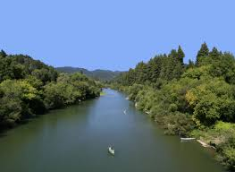 russian beaches algae caution advisory issued for russian river beaches