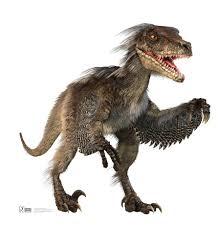 velociraptor pictures u0026 facts the dinosaur database