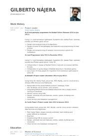 Leader Resume Examples by Project Leader Resume Samples Visualcv Resume Samples Database