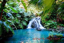 jewel of maui spirit of aloha wdwprince