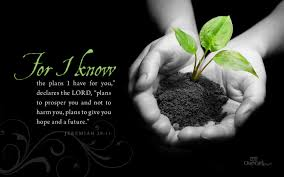 Plan 1440 I Know The Plans Bible Verses And Scripture Wallpaper For Phone