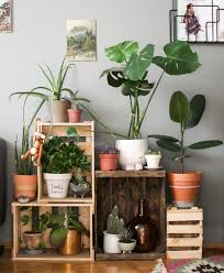 Best Home Decor Images On Pinterest DIY Home And Plant Stands - Home decoration plants