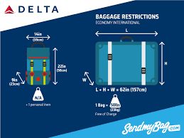 Georgia How Far Does Light Travel In One Second images Delta baggage allowance and fees for carry on checked baggage jpg