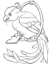 bird coloring pages for toddlers pet coloring pages free pet bird coloring pages free printable pet