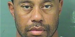 Tiger Woods Meme - the tiger woods dui arrest report business insider