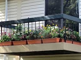 inside urban green balcony gardening