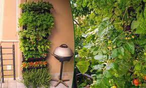 vertical garden made in australia by wallgarden