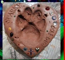 dog cremation pet cremation seattle at home pet euthanasia seattle