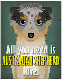 australian shepherd gifts 20 must have items for australian shepherd lovers american