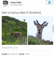 Scottish Memes - scotland memes best collection of funny scotland pictures