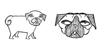 how to draw a dog pug edition