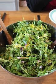 cuisine crue et vivante les nouveaux ateliers chlorawphylle cuisine crue alimentation