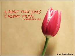 Cute Love Couple Quotes by Love Qoutes For Him Wallpapers Love Qoutes For Him Couple Love