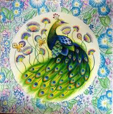 391 color book animal kingdom millie marotta images