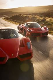 rare ferrari enzo 224 best ferrari enzo images on pinterest cars auto auto and