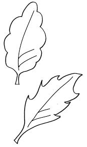 Coloriages De Pommier Coloriage Feuille De Pommier  smartgorodme