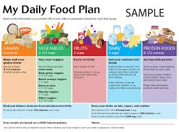 daily diet plan with indian food u2013 diet plan