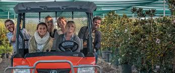 downes wholesale nursery wholesale plants sydney
