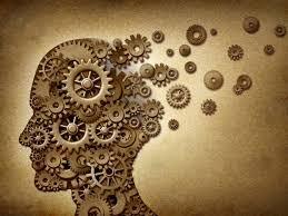 ap psychology review biological basis u0026 behavior youtube