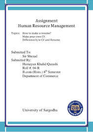 Difference Between Curriculum Vitae And Resume Assignment Resume