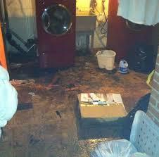 Ceiling Water Damage Repair by Best 25 Water Damage Repair Ideas On Pinterest