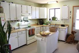 Paint For Kitchen Countertops Help Me Choose Kitchen Countertops U0026 Paint