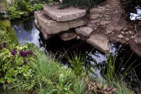 some inspiring ideas you can use when designing a rock garden