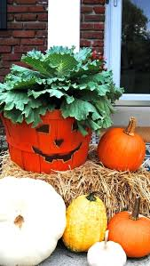 fall outdoor decorations fall plant decorations outdoor fall decorations beautify your lawn