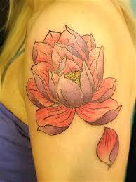 70 lotus design ideas nenuno creative