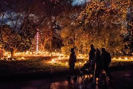 royal botanic garden edinburgh christmas