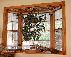 tips to dress up your windows