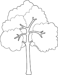 10 best images of bare fall tree coloring page trees without