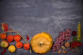 harvest or thanksgiving background thanksgiving day food concept