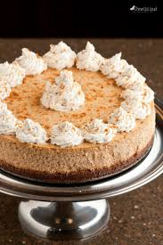 Gingersnap Pumpkin Cheesecake by Best New York Style Pumpkin Cheesecake Chew Out Loud