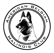 belgian shepherd qualities belgian malinois community braces for influx of rescue dogs