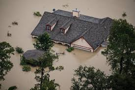 What To Do If Your Basement Floods by Here U0027s What Will Happen When Your House Floods Huffpost