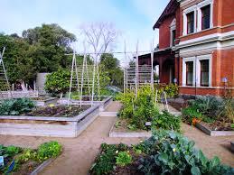 Melb Botanical Gardens by Idea Metungvillage
