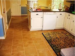 Kitchen Flooring Ideas Vinyl Kitchen Floor Shining Kitchen Flooring Types Interior