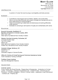 resume objective for students exles of a response resume sle for human services susan ireland resumes
