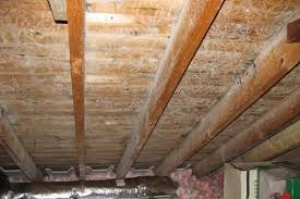 Types Of Mold In Bathroom by Surviving Mold In Your Attic How To Kill Attic Mold