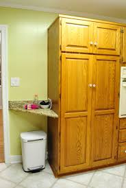 Kitchen Pantry Cabinets by Shifting Cabinets And Appliances For A New Kitchen Layout Young