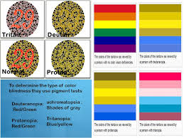 Blue Yellow Color Blind Color Blindness B Y M A R E I M ü N S T E R M O L L Y S