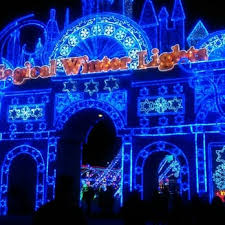 zoo lights houston prices magical winter lights 411 photos 102 reviews festivals 1000