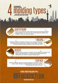 fantastic floor 4 common molding types infographic