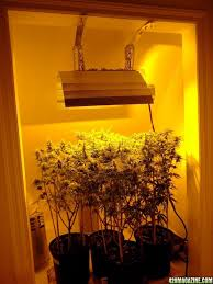 magazine charly you see here it small grow room would work equally