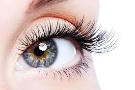 Professional Eyelash Extension Professional Eyelash Extensions