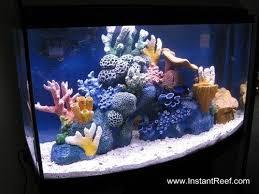 how to make marine aquarium set up easy salt water fish aquarium