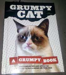 No Grumpy Cat Meme - no grumpy cat a grumpy book review 2 shots of geek