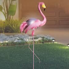 102 best flamingos images on pink flamingos flamingo